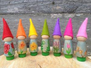 gnome6